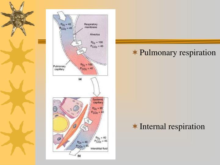 Pulmonary respiration