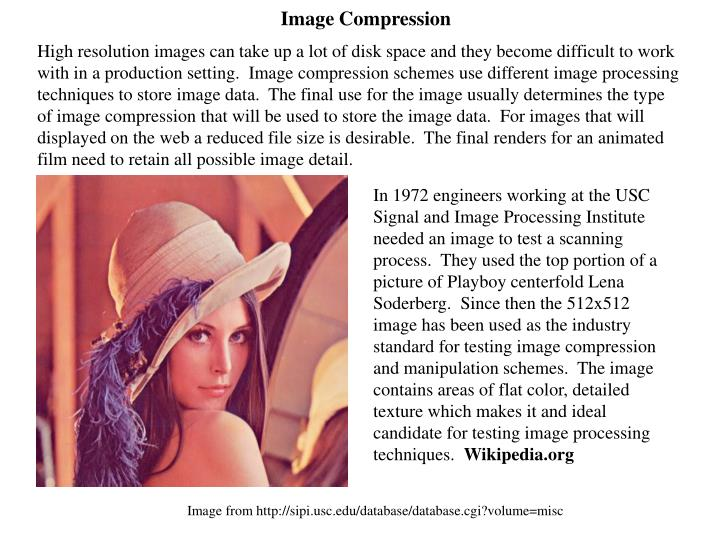 High resolution images can take up a lot of disk space and they become difficult to work with in a production setting.  Image compression schemes use different image processing techniques to store image data.  The final use for the image usually determines the type of image compression that will be used to store the image data.  For images that will displayed on the web a reduced file size is desirable.  The final renders for an animated film need to retain all possible image detail.
