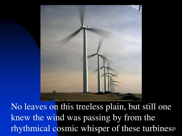No leaves on this treeless plain, but still one knew the wind was passing by from the rhythmical cosmic whisper of these turbines.