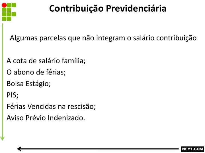 Contribuição Previdenciária