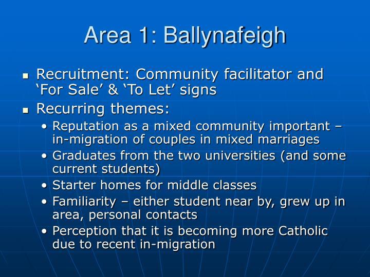Area 1: Ballynafeigh