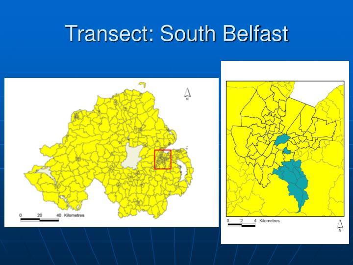 Transect: South Belfast