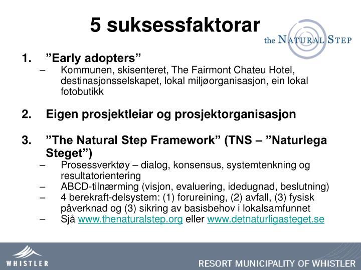 5 suksessfaktorar