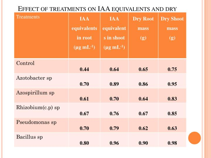 Effect of treatments on IAA equivalents and dry root /shoot mass of maize