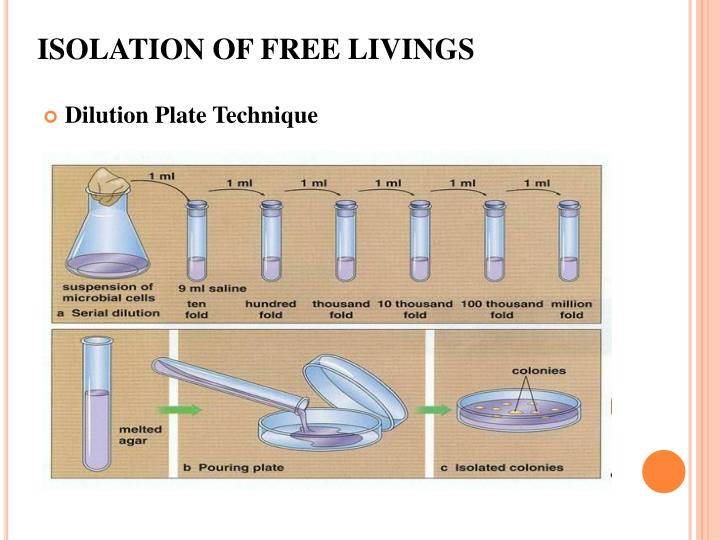 ISOLATION OF FREE LIVINGS