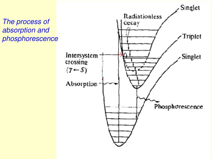 The process of absorption and phosphorescence
