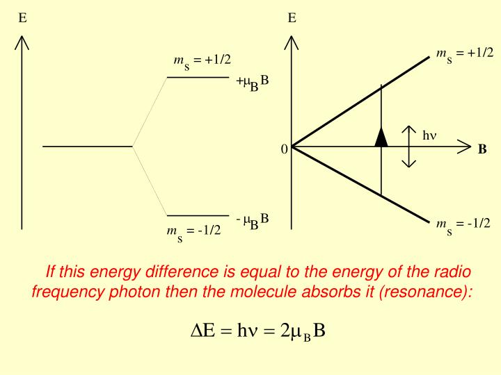 If this energy difference is equal to the energy of the radio frequency photon then the molecule absorbs it (resonance):