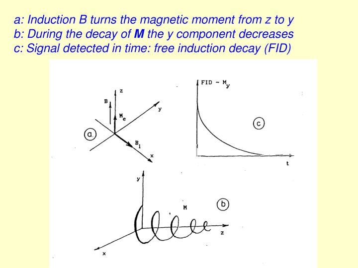 a: Induction B turns the magnetic moment from z to y