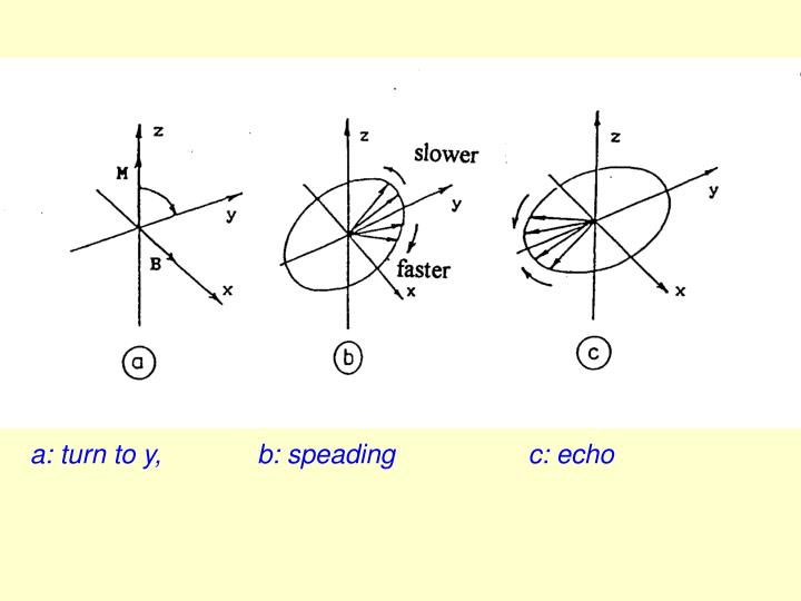 a: turn to y,             b: speading                  c: echo