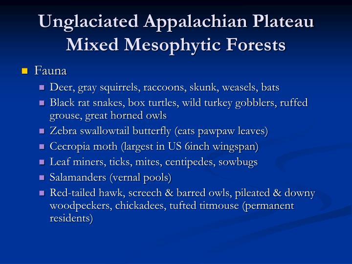 Unglaciated Appalachian Plateau
