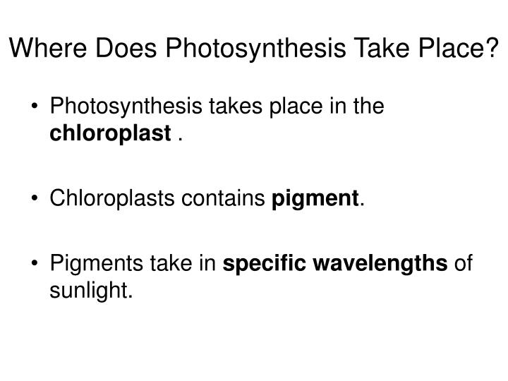 does photosythesis take place 650 east 91st place chicago il 60619 312-535-3300 objectives: (adaptable to  grade levels 6-9) the student will: 1 observe evidence of photosynthesis in a.