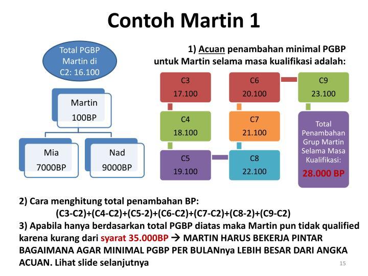 Contoh Martin 1