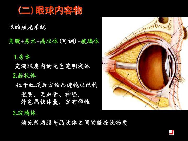 (二)眼球内容物