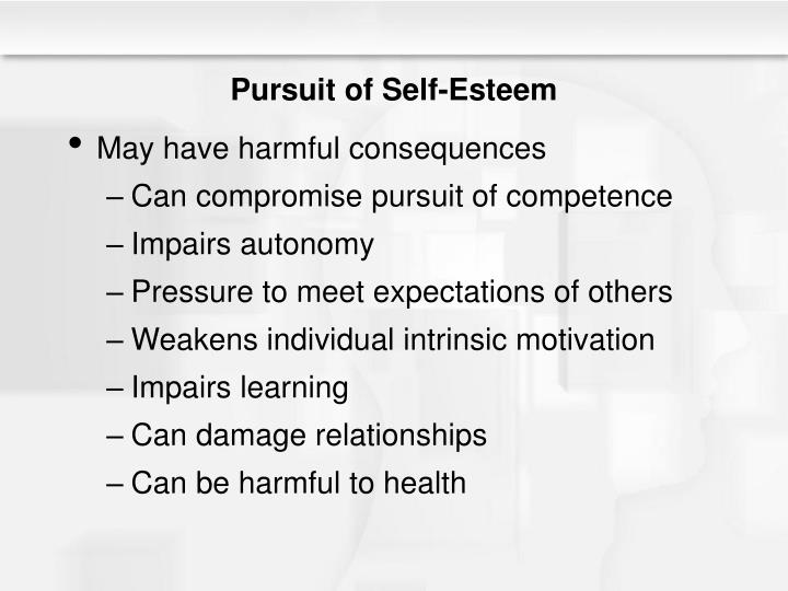 Pursuit of Self-Esteem