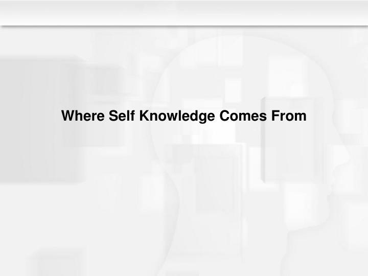 Where Self Knowledge Comes From