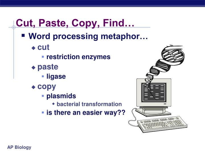 Cut, Paste, Copy, Find…
