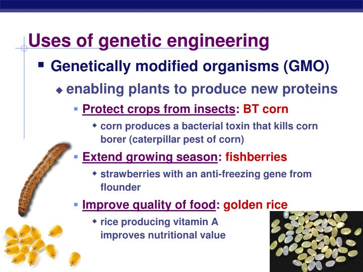 Uses of genetic engineering