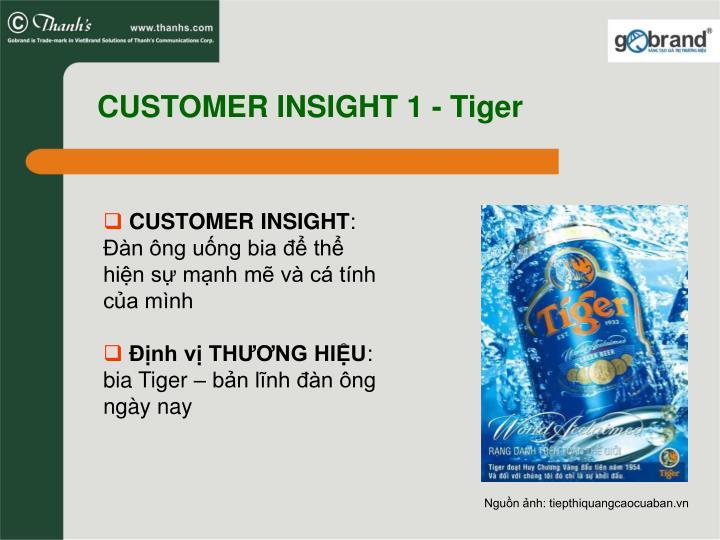 CUSTOMER INSIGHT 1 - Tiger