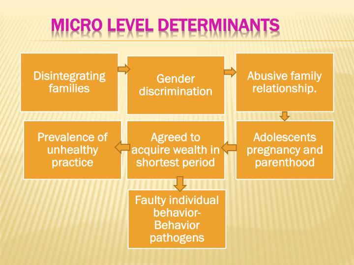 Micro level determinants