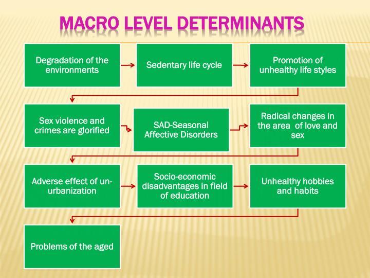 Macro level determinants