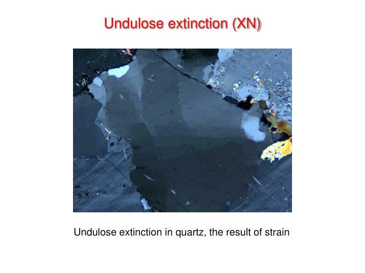 Undulose extinction (XN)