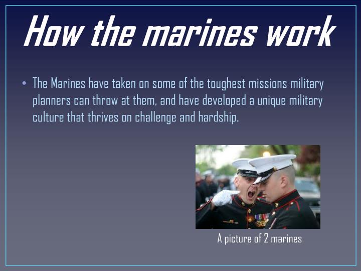 How the marines work
