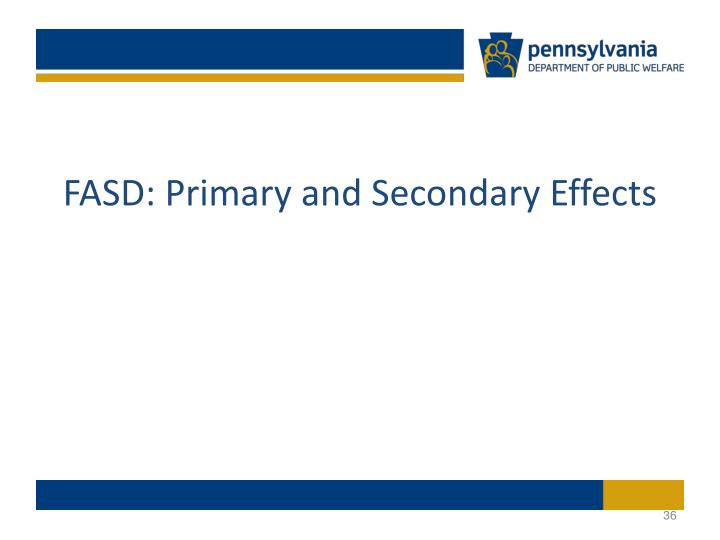 FASD: Primary and Secondary Effects