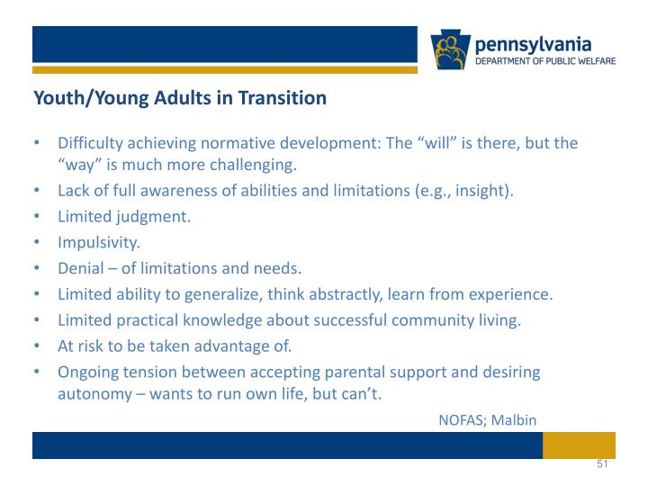 Youth/Young Adults in Transition