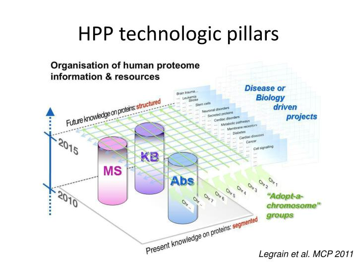 HPP technologic pillars