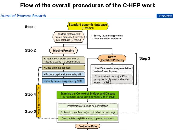 Flow of the overall procedures of the C-HPP work