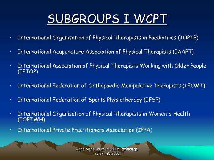 SUBGROUPS I WCPT