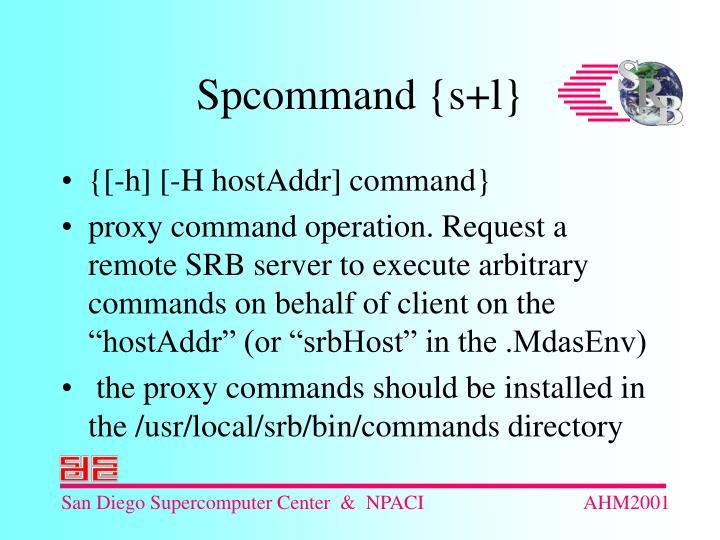 {[-h] [-H hostAddr] command}