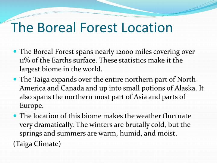 The boreal forest location