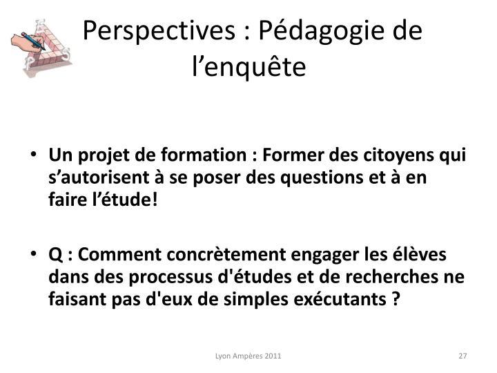Perspectives : Pédagogie de l'enquête
