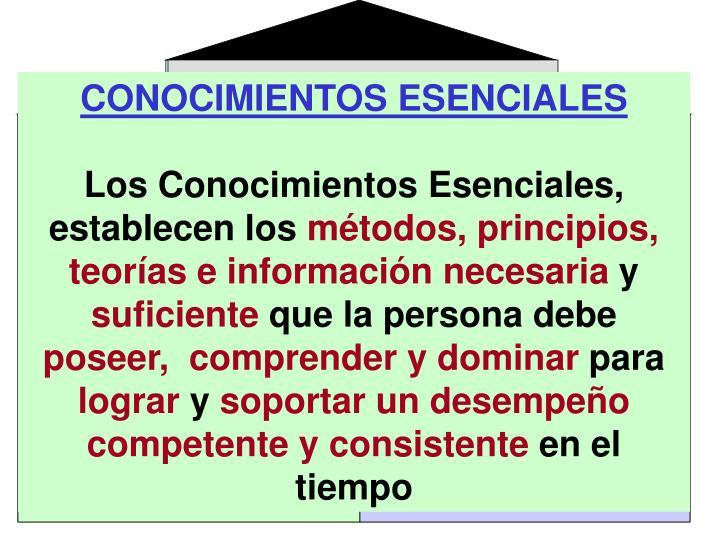 CONOCIMIENTOS ESENCIALES