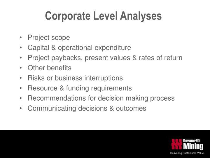 Corporate Level Analyses