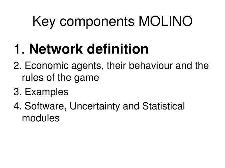 Key components MOLINO