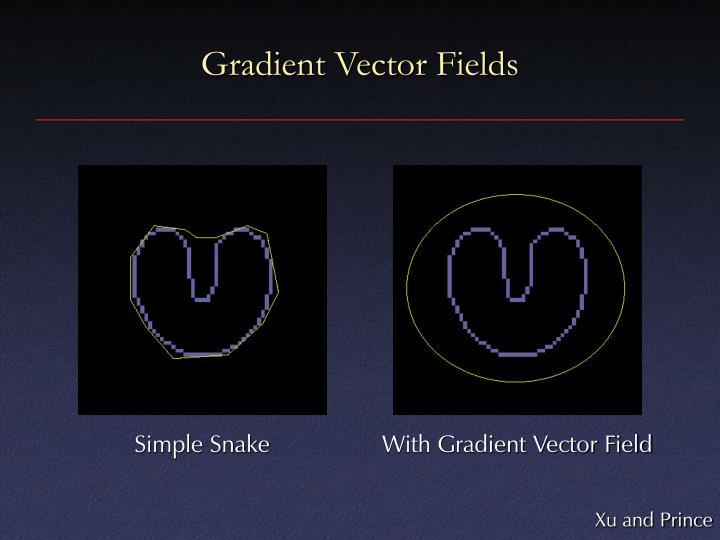Gradient Vector Fields