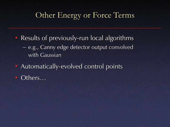 Other Energy or Force Terms