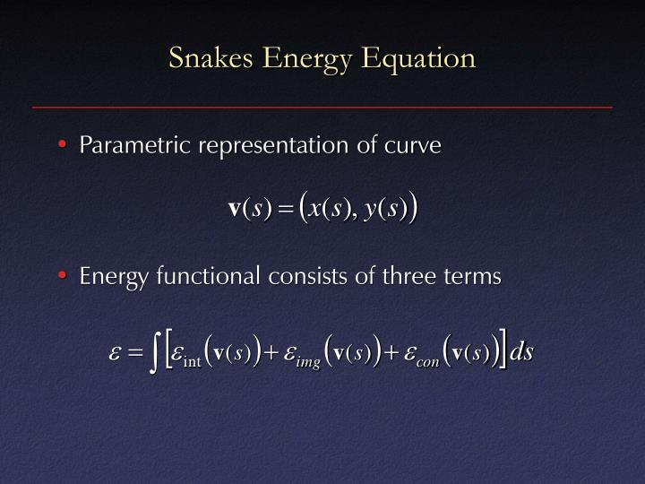 Snakes Energy Equation