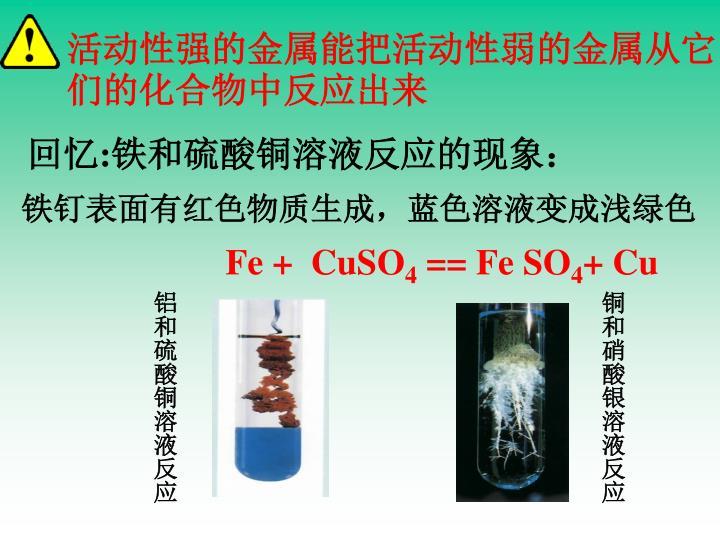 活动性强的金属能把活动性弱的金属从它们的化合物中反应出来
