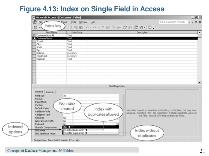 Figure 4.13: Index on Single Field in Access
