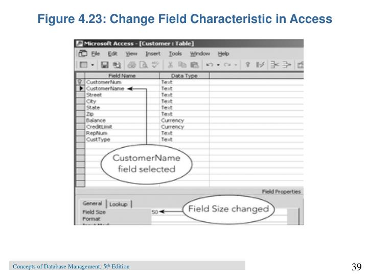 Figure 4.23: Change Field Characteristic in Access