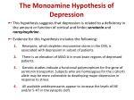the monoamine hypothesis of depression