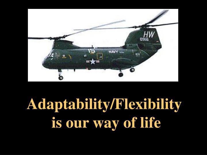 Adaptability/Flexibility