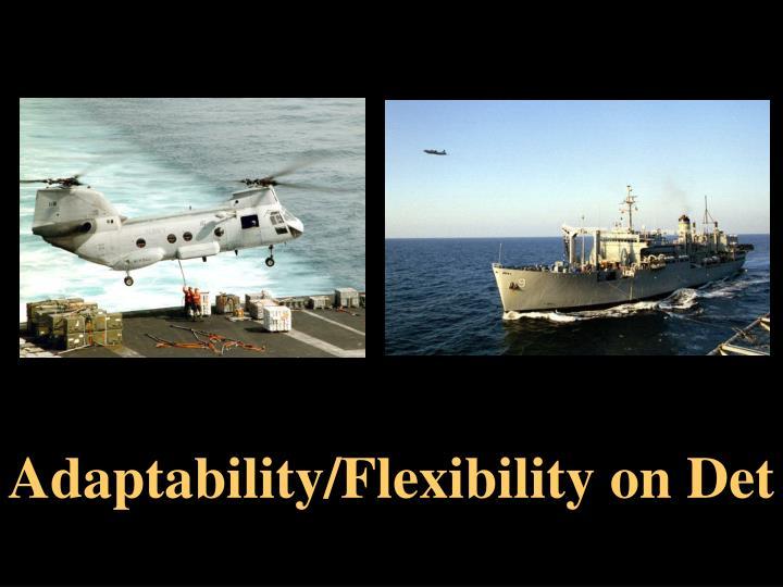 Adaptability/Flexibility on Det
