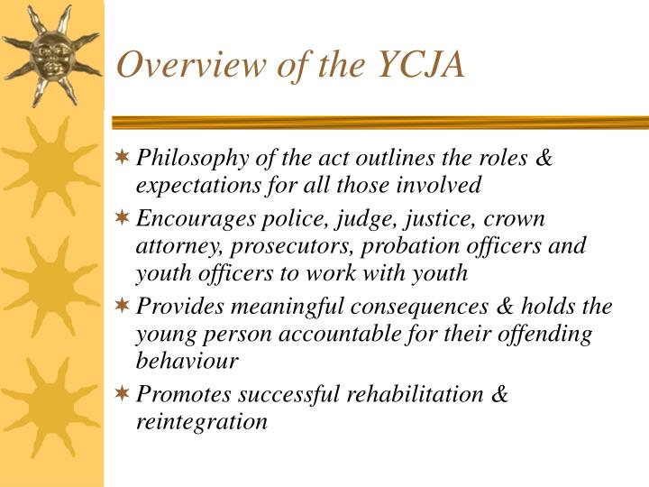Overview of the ycja