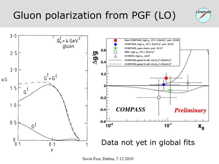 Gluon polarization from