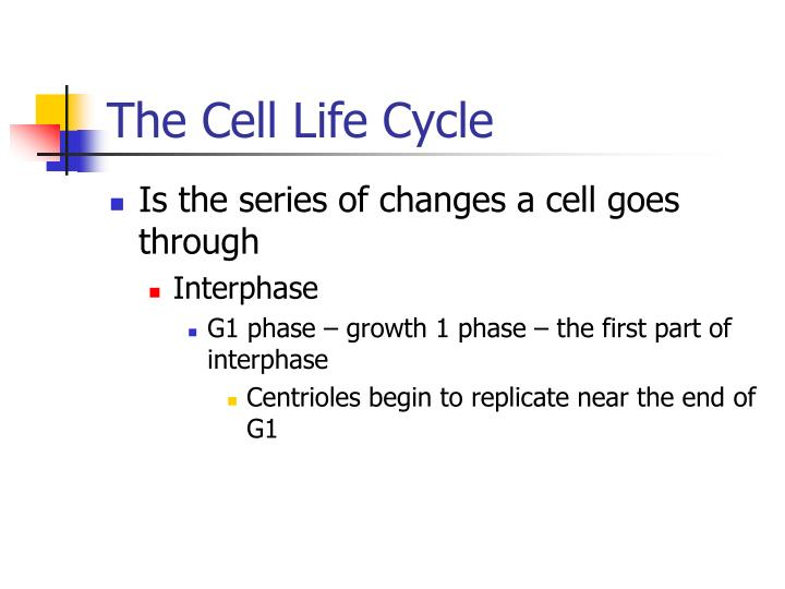 The Cell Life Cycle