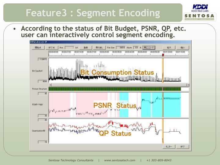Feature3 : Segment Encoding